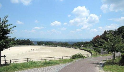 生駒山麓公園で2時間ほど遊んできたんだけどなかなか良かった。手ぶらで楽しめる。