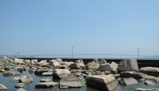 大蔵海岸公園に行ってきた。5月の海辺は最高。